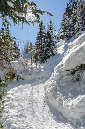 dream lake: Heading uphill on a snow shoe trail in the Colorado mountains Stock Photo