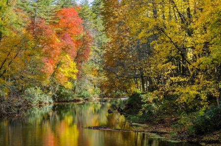 north ridge: Fall leaves along Linville River along the Blue Ridge parkway in North Carolina Stock Photo