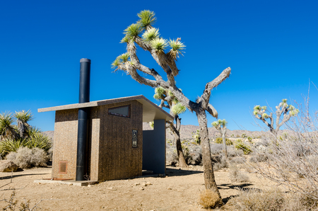privy: Desert privy with Joshua trees on a blue sky day Stock Photo