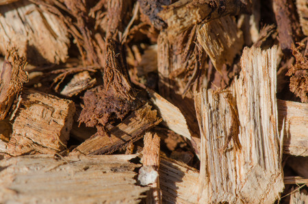 wood chip: Wood chip detail from landscaping background Stock Photo