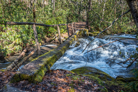 rickety: Simple log bridge over fast moving creek in the Great Smoky Mountain National Park Stock Photo