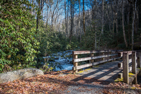 smokies: Bridge across swift moving creek in the Great Smoky Mountains National Park