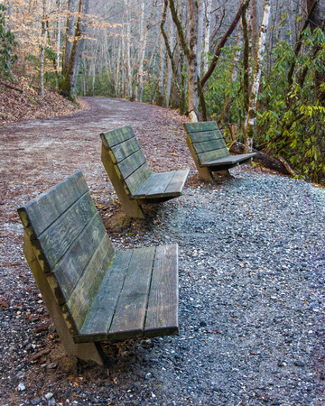 great smoky national park: Group of benches looking in same direction at a scenic overlook in the Great Smoky Mountains National Park
