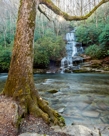 great smoky mountains national park: Sun rises over water fall across from Deep Creek in the North Carolina section of the Great Smoky Mountains National Park Stock Photo