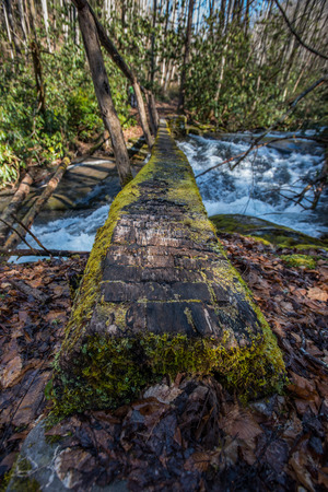 great smoky national park: Close up perspective of moss covered log bridge over a creek raging with snow melt in The Great Smoky Mountains National Park Stock Photo