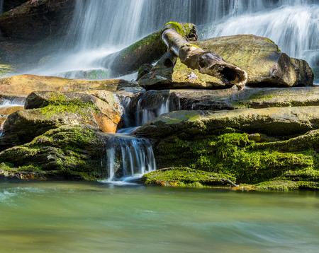 north cascade national park: Water streams down moss covered rocks in Deep Creek in the Great Smoky Mountains National Park Stock Photo