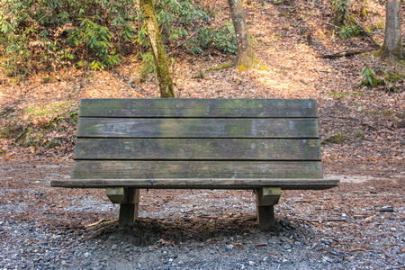 great smoky national park: Wooden bench along trail near Tom Branch Falls in the Great Smoky Mountains National Park Stock Photo