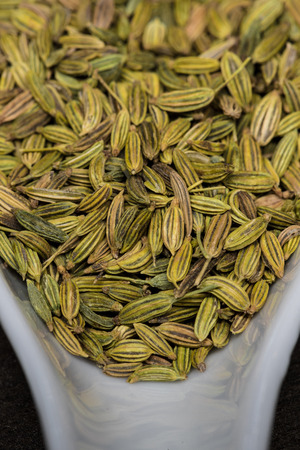 Fennel Seed Close Up In White Spoon very close up