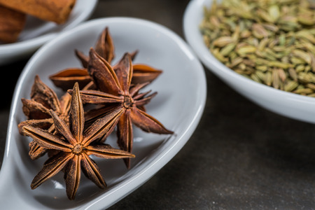 five star: Star Anise in White Spoon with other components of Chinese five spice in background