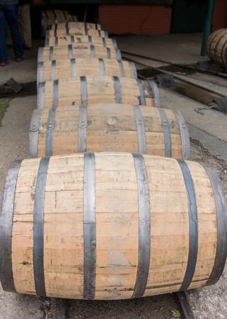 single line: Row of Barrels Rolling  n a single line Vertical