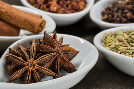 Star Anise and Five Spice in White Spoons with anise in foreground