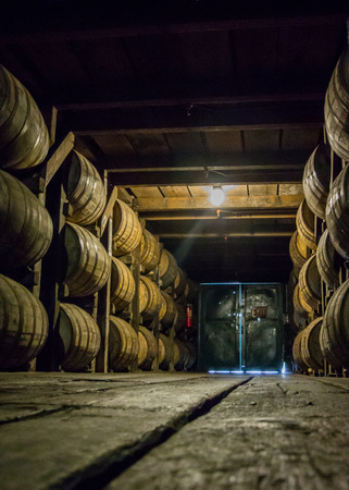 brewery: Low View of Barrel Walkway in storage room Stock Photo