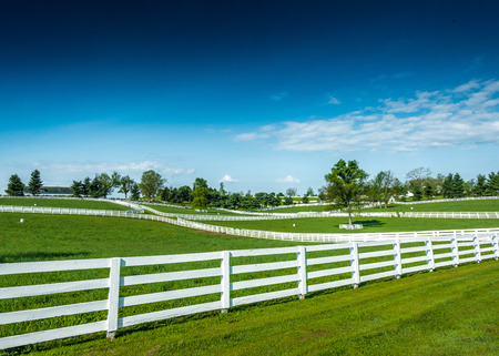 Overlooking the pastures and bright green grass of Kentucky horse farms