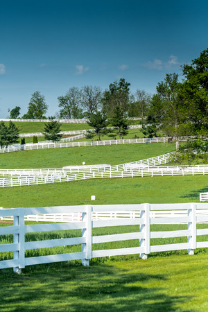 bluegrass: Horse Farm Fences on a Clear Day weave across the Kentucky hillside