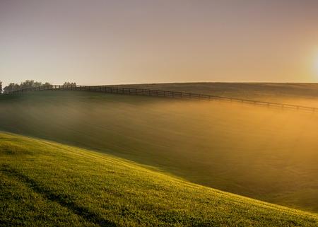 Sunlight Through the Fences along a horse farm in Kentucky