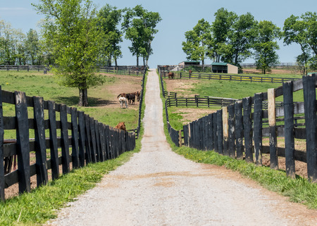 rickety: The Path to the Back of the Farm through rickety black fences Stock Photo