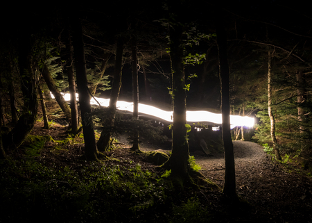 appalachian trail: Flash of Light on The Appalachian Trail through the forest at night