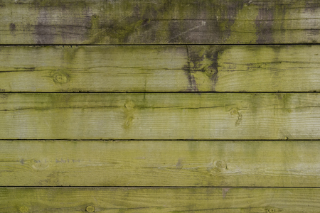 untreated: Green Algae Covered Wooden Wall background image