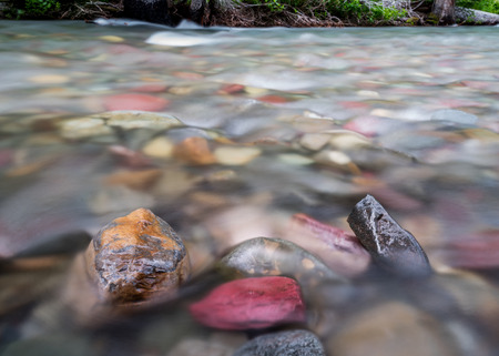 rushes: Water Rushes Past Exposed Rocks in Mountain Creek in Montana