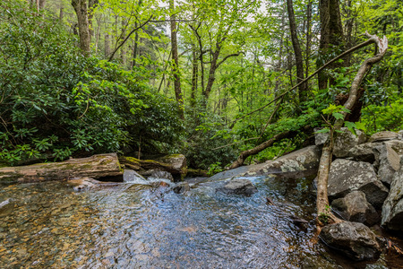 great smokies: Waterfall Basin Pours Into Mountain Valley in the Great Smoky Mountains Stock Photo