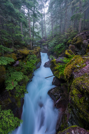 Water Flows Through the Narrows of Avalanche Creek