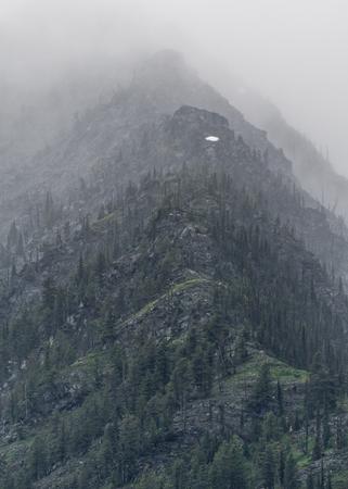 ridgeline: Mountain Gradients climb through thick fog