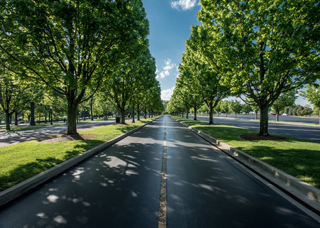 The Road Leaving Keeneland in summer