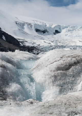 icefield: Glacial Melt Stream with Columbia Icefield in the Background as the snow begins to melt in summer