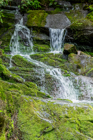 north cascade national park: Waterfall Over Large Mossy Rocks in Spring Creek in the Smoky Mountains Stock Photo