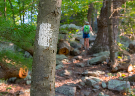 appalachian: Appalachian Trail Blaze with Hiker in Background climbing rocks Stock Photo