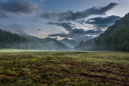 great smokies: Fog Blows Through Grassy Valley in Summer in the Smoky Mountains