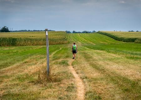 resplandor: Caminan a través del campo de maíz abierto en la tarde de verano