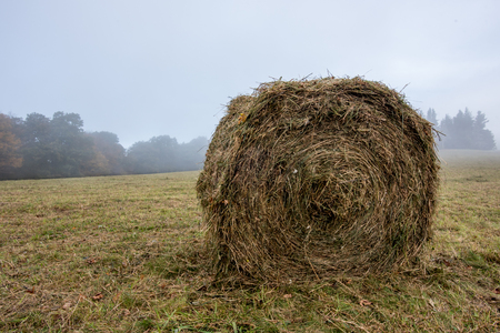 Round Bail of Hay in Foggy Autumn Field in fall