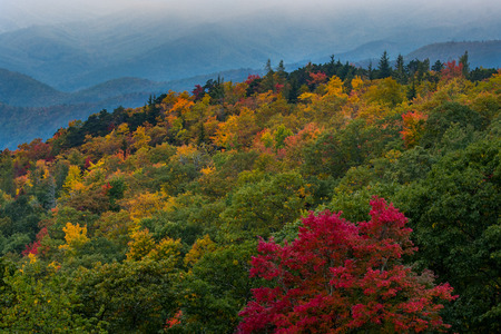 carolina: Changing Leaves on Rounded Mountain with valley behind Stock Photo