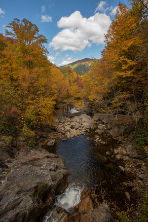 north cascade national park: Fall Near the Blue Ridge Parkway looking down over waterfall