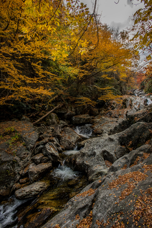 north cascade national park: Waterfall at Sams Branch in Fall tumbles over boulders