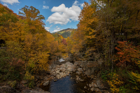 north cascade national park: Fall at Sams Branch overlook with autumn colors