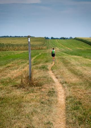 appalachian trail sign: Hiking Through Open Corn Field  in Summer Vertical