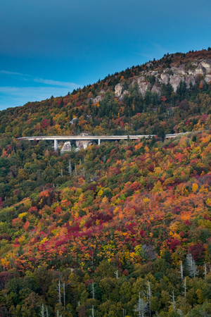 changing color: Leaves Changing Color Around Linn Cove Viaduct in Fall Vertical