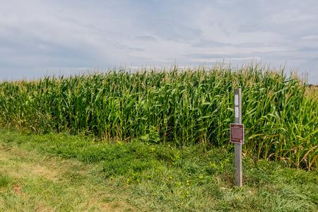 appalachian trail sign: Appalachian Trail Double Blaze at Corn Field Edge