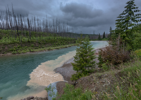 Muddy Water Flows into Clear Blue Creek on Rainy Day in Montana Stock Photo