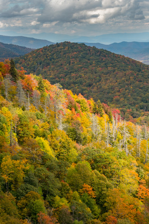 Brightly Colored Fall Leaves on a Ridge of the Appalachian Mountains Stock Photo