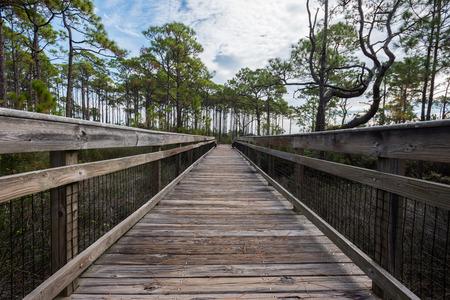 ange: Wooden Walkway Over Marsh on St George Island
