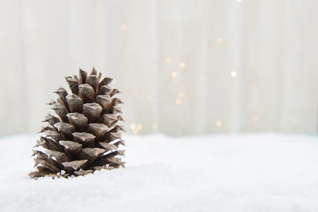 Single Pine Cone in Snow with Copy Space to Right Stock Photo