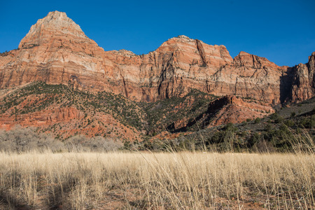 The Watchman and Dry Grass in southern Utah