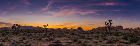joshua: Wispy sunset over Hidden Valley in Joshua Tree Stock Photo