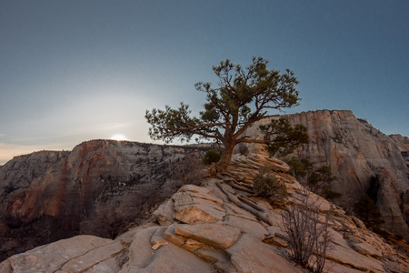 Morning Breaks Over the Canyon  atop Angels Landing