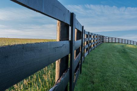 Schwarzer Zaun windet sich um grünes Gras am frühen Morgen Standard-Bild - 83128711