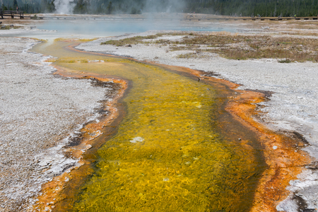 Yellow Sulfur Trail from Hot Springs in Yellowstone with tourists walking on footbridge in background Reklamní fotografie