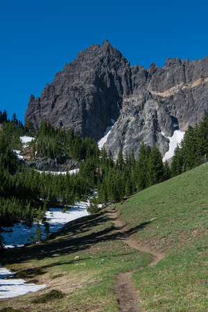 Trail Leads to Three Fingered Jack in central Oregon